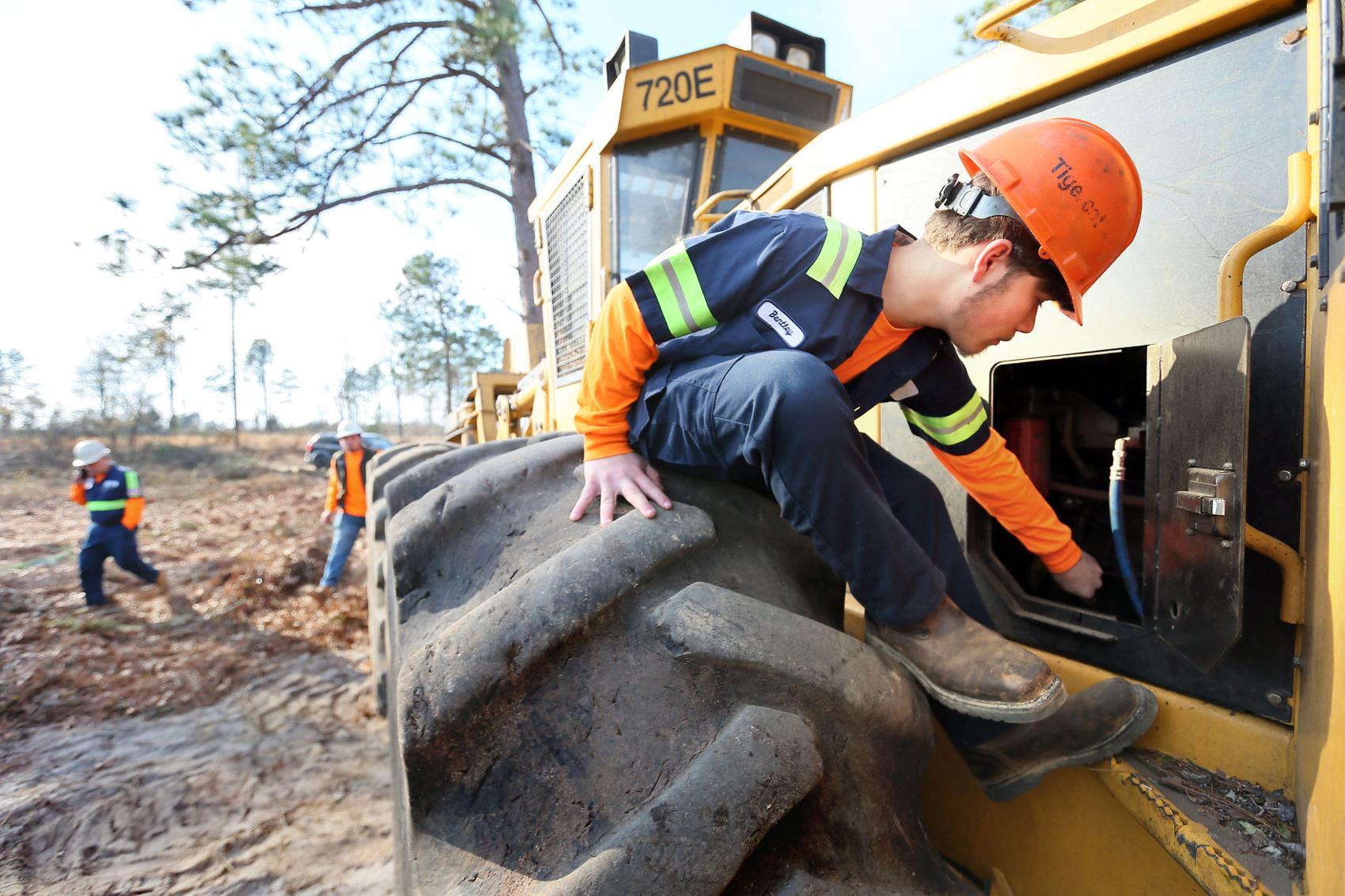 Beech Island Timber Apprentice